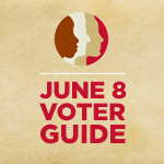 June 8, 2010 Voter Guide